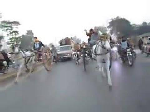 Jahngir Khan Horse Race .King of Pabbi Peshawar
