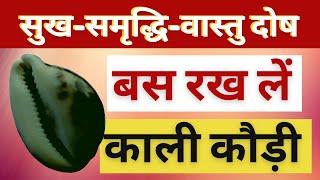 Kaali Kaudi Se Karen Grah Shanti Aur Sukh Prapti Ke Upay - काली कौड़ी के तांत्रिक प्रयोग