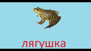 Русская Рыбалка 3.99 ловля лягушки на Клязьме.