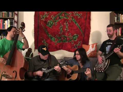 Shocking Blue - Love Buzz: Couch Covers by The Student Loan Stringband