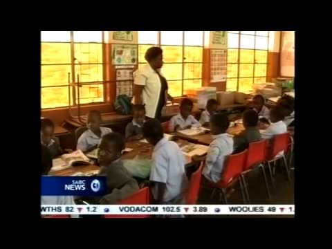 SECTION27 E News Night - Limpopo Textbooks