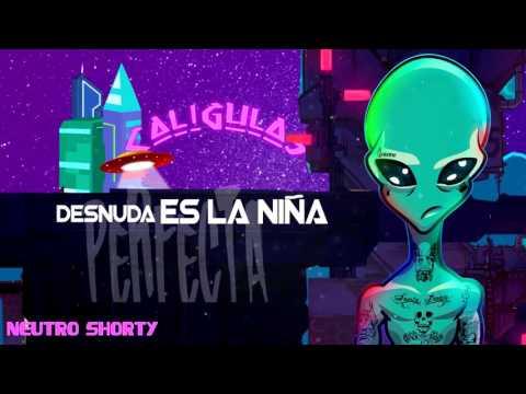 Neutro Shorty - Mi Muñeca ft. Micro TDH & El Ceh Bestial [Lyric Video]
