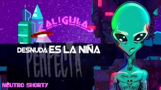 Neutro Shorty - Mi Muñeca ft. Micro TDH & El Ceh Bestial [Lyric Video] thumbnail