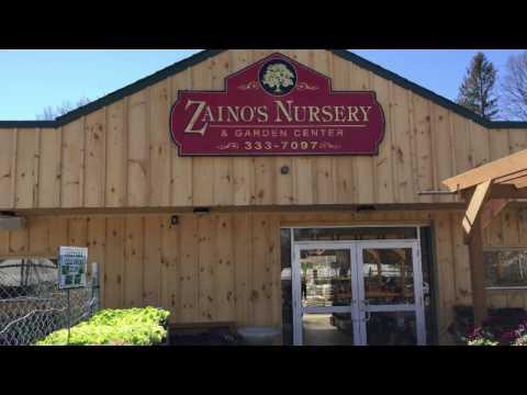 Zainos nursery garden center - Call 516 333 7097