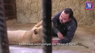 Idam buka zoo selepas perang