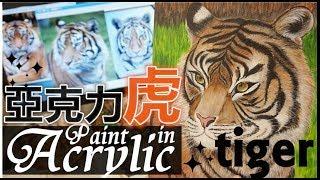 Sharing/Painting Acrylic Paint 手繪動物插圖 ⋆ °TIGER老虎° ⋆ 亞克力彩/塑膠彩