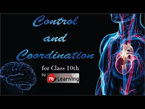 Control & Coordination: Nervous System & Endocrine System - 01 For Class 10th and NTSE