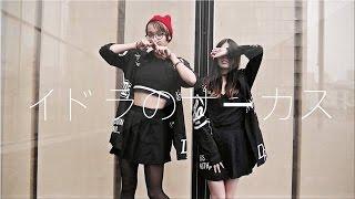 HD AVAILABLE Choreography: まなこ 【まなこ×やっこ】イドラのサーカス...