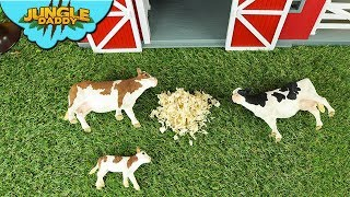 "Farm COWS Sleeping Time | ""Jungle Daddy"" ranch learn animals for kids toys"