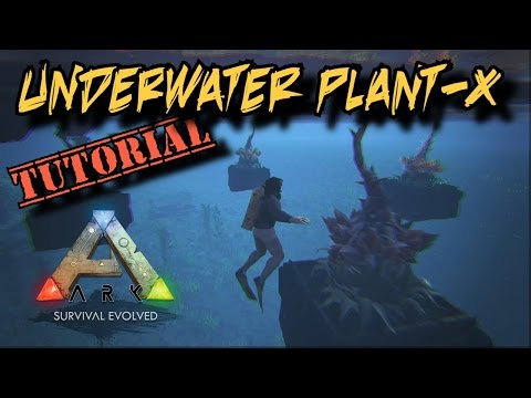 How to Grow Plant-X Underwater - Ark Survival Evolved