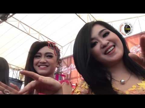 SNP Indonesia - New Pallapa Kupu Tegal