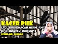 Lagu Kusut Macam Mesin Jahit Bikin Rusuh Di Joki Cup  Phk  Mp3 - Mp4 Download