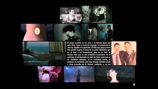 Taxonomía de las transformaciones - Video panel nº1 - Categoría: Transgénero