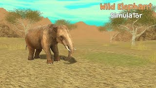 Wild Elephant Sim 3D - Gameplay Android