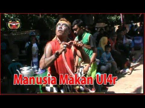 Atraksi Pentas Reog - Manusia Kanibal oleh Reog Mekar Bandung Budoyo