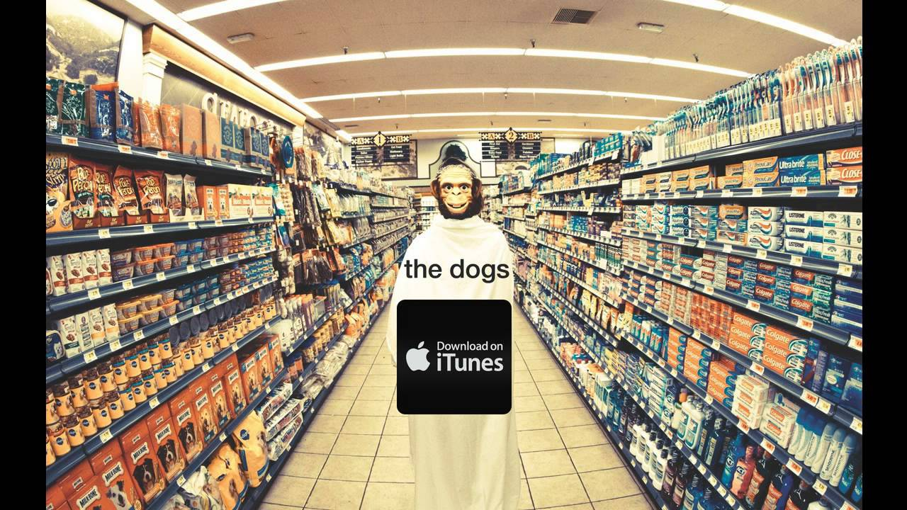 moby-the-dogs-from-the-album-innocents-moby