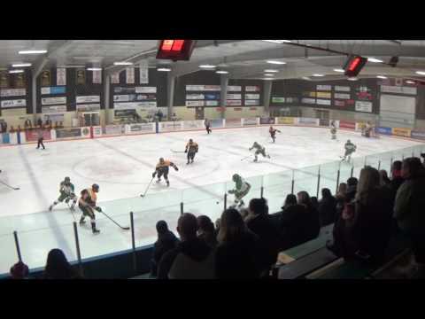PJHL - Exeter vs Thamesford Game 5 February 17, 2017 #1