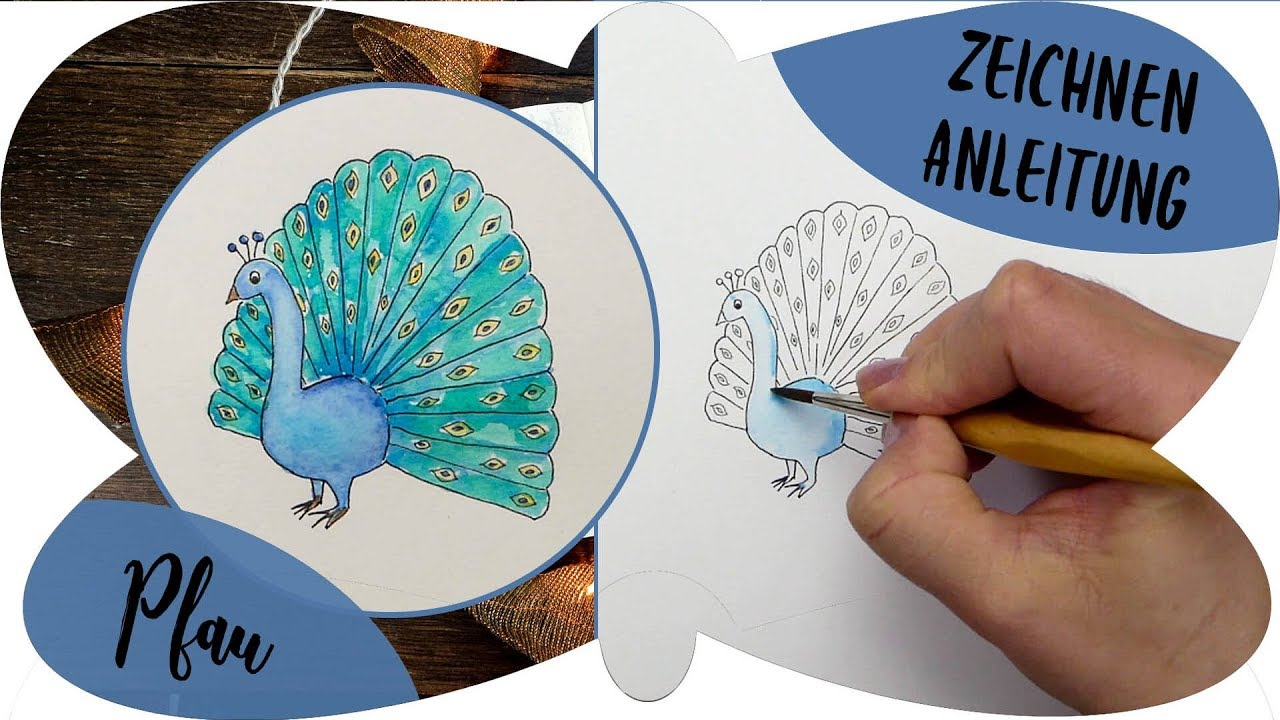 PFAU zeichnen Anleitung | Schritt für Schritt | Zeichnen ...