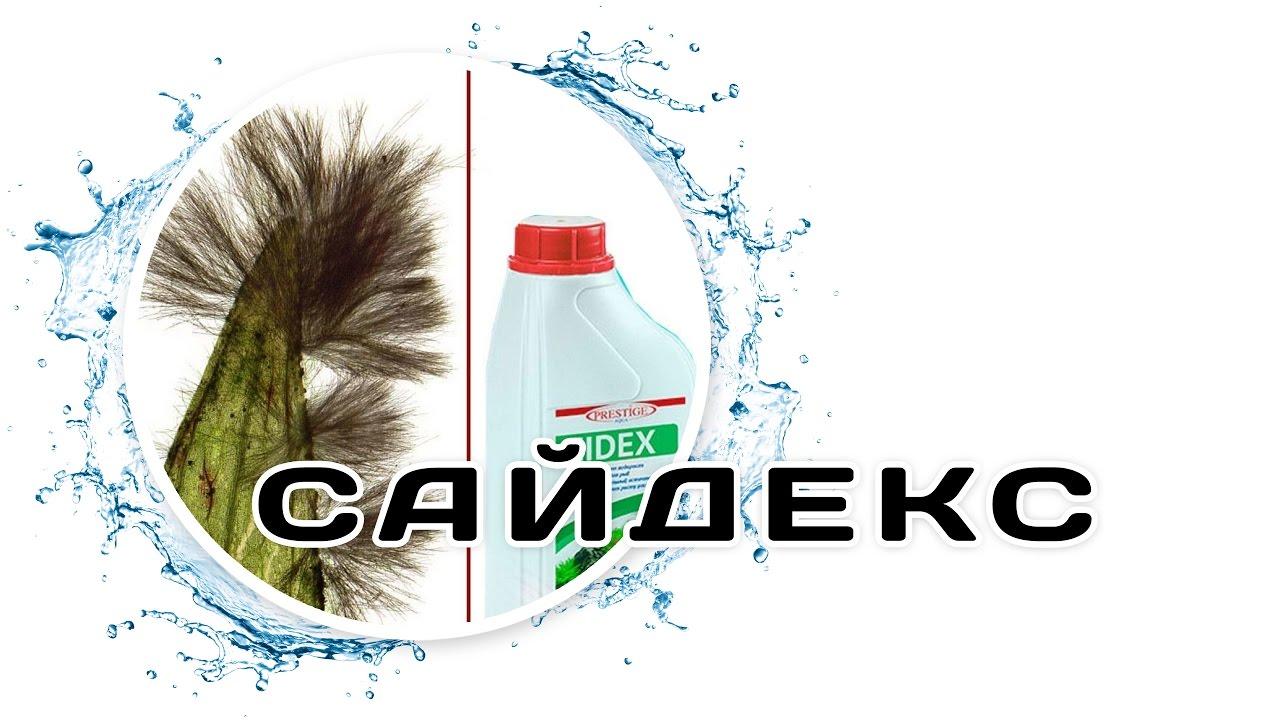 Sidex green 100 мл средство против водорослей тверской бульвар 24 1 true cost