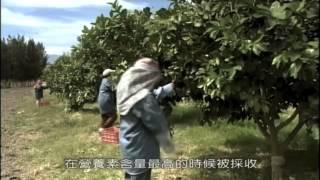 Amway Nutrilite 四大農場 Discovery 特別報導