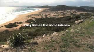 'Sharing An Island' official film trailer