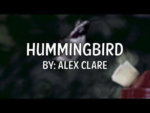 Hummingbird - Alex Clare [Lyric Video]