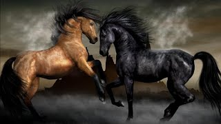 Клип конный спорт