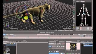 Анимация животных -2