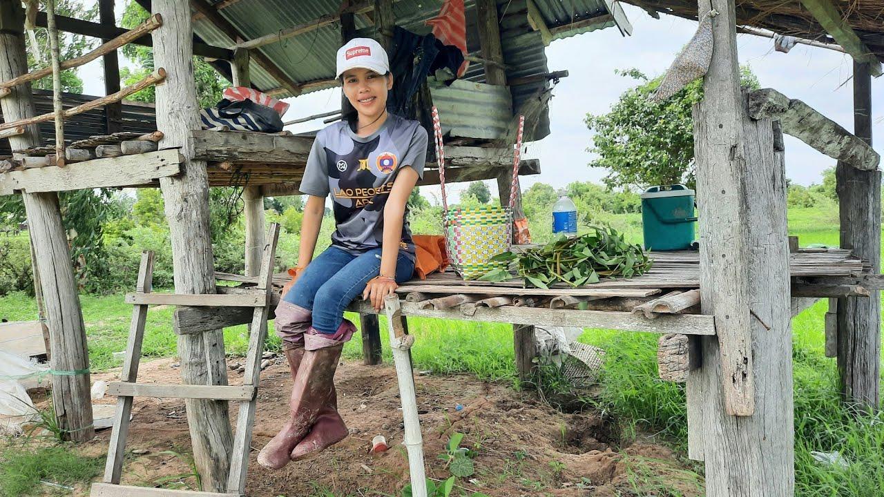 ปี้งแบ้ ตำบักหุ่งกินข้าวอยู่เถียงนา เล่าชีวิตสาวลาวตอนทำงานอยู่ไทย  🇹🇭 = ເລົ່າເບື້ອງຫລັງເພງ