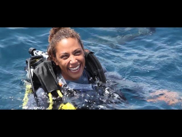 PADI Learn to Scuba Dive