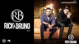 Baixar Bruta Rústica e sistemática - Rick e Bruno