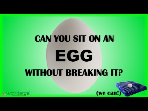 WonderGel Shows How to Sit on an Egg Without Breaking It!
