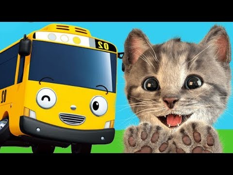 Wheels on the Bus | Little Kitten Funny Cats Nursery Rhymes & Kids Songs