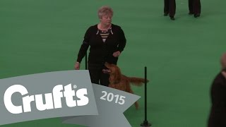 Dog Obedience Championships - Part 5 | Crufts 2015