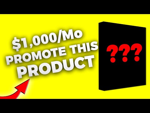 Affiliate Marketing: Make $100 A Day Promoting This Product