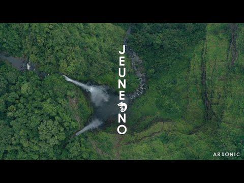 jeune-no---les-colibris-(vidéo-officielle)