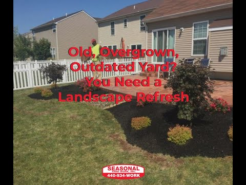 Old Overgrown Outdated Yard You Need A Landscape Refresh