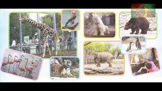 """Окружающий мир 1 класс ч.2, Перспектива, с.26-27, тема урока """"В зоопарке"""""""