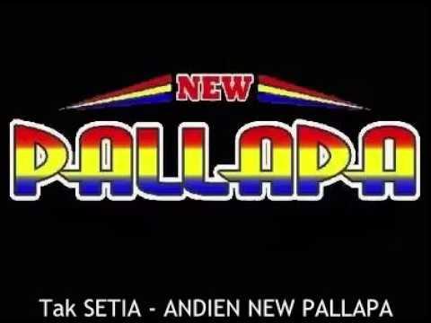 12. TAK SETIA ANDIEN NEW PALLAPA
