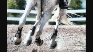 Ich und mein Pony Resimi