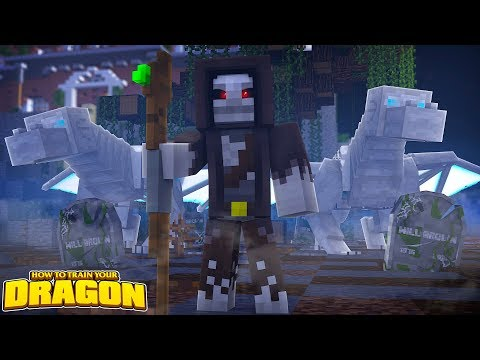 AFTER THE DRAGON WAR - How To Train Your Dragon