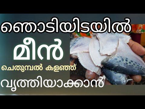 How to clean Fish quickly and easily/ ഇതിലും എളുപ്പം  സ്വപ്നത്തിൽ മാത്രം