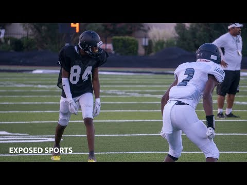 Bishop Lynch High School vs Ranch View High School Highlights   2018 Week 0