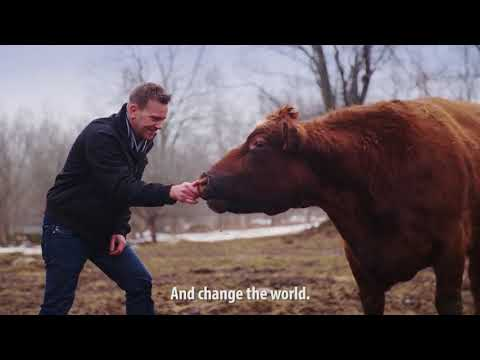 Let's Create A World Without Factory Farming