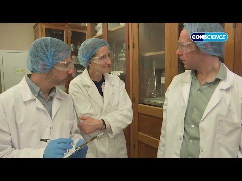 Bonne nouvelle scientifique - Groland - CANAL+