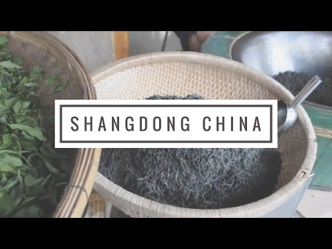 Dumplings & Zhajiangmian + What To Eat In Shandong, China