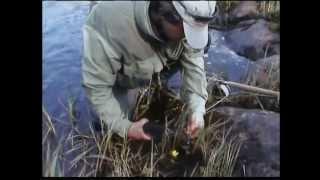 Pêche à la mouche - Péninsule de Kola