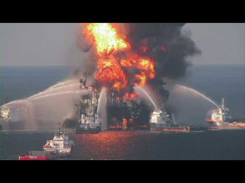 Our One Ocean--Oil Spills | SeaWorld®