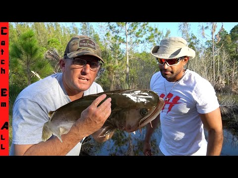 How I Made My EXOTIC FISH Safe TO EAT!.... **DEER MEAT FOR DINNER Catch And Cook**