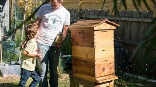 Flow Hive Meet the Beekeeper trailer teaser 1 [Australia]